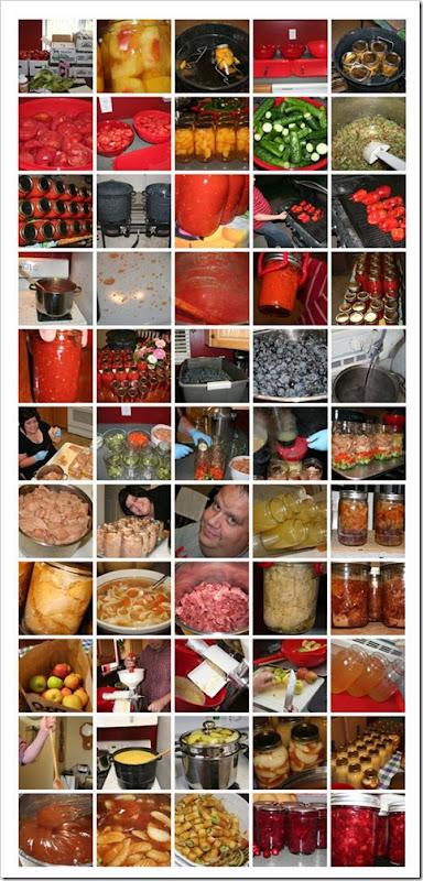 Canning2010Snapshots