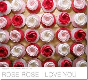 08-ROSE