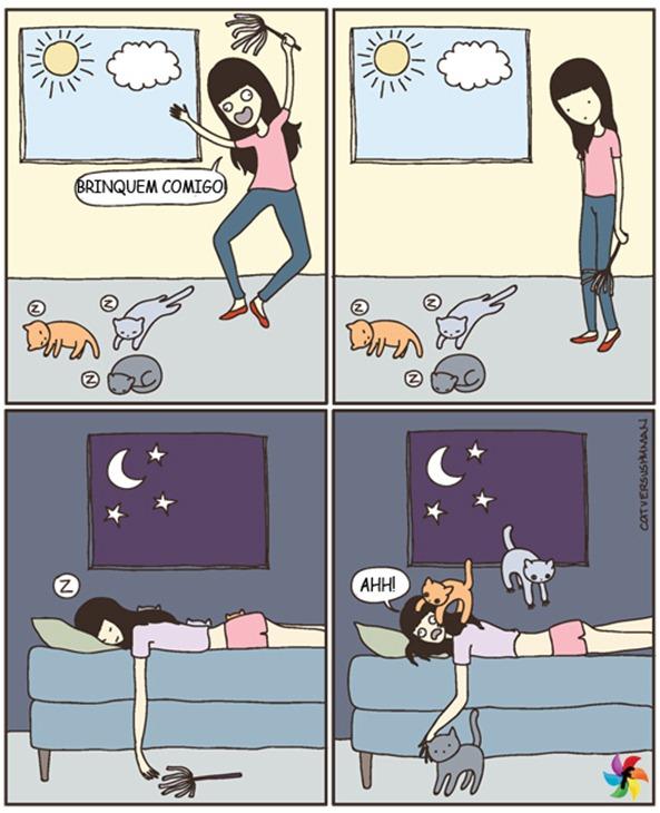 gatos_sem_humor