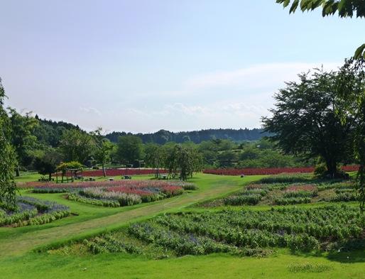 15. ushiku daibutsu jardim