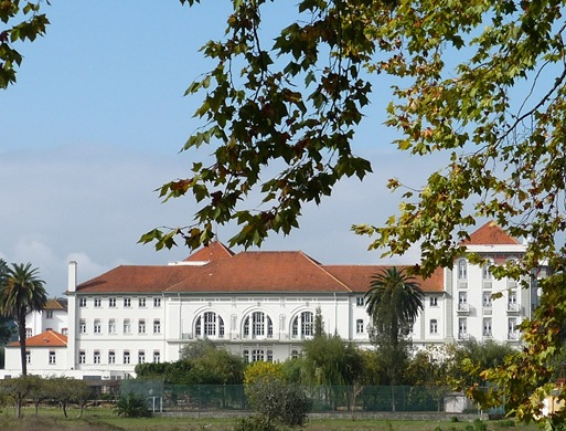 curia - palacio