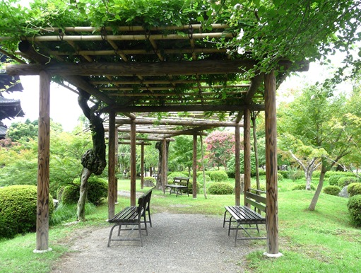 15.templo Toji - jardim - lago - local para descansar