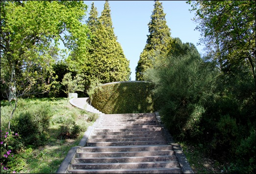 jardim serralves - jardim