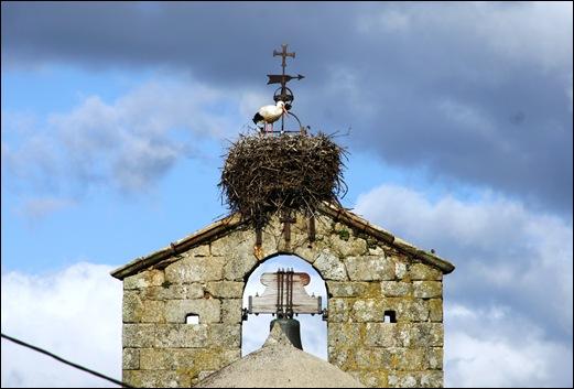 Sabugal - Glória Ishizaka - torre sineira - cegonha