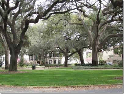 Savannah Trip and More! 118