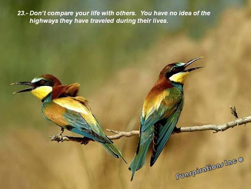 Don't compare your life with others. You have no idea of the highways they have traveled during their lives.