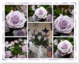 mothers day roses2