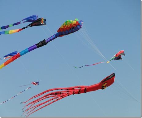 kite 049