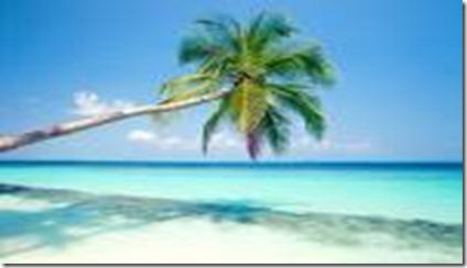 férias