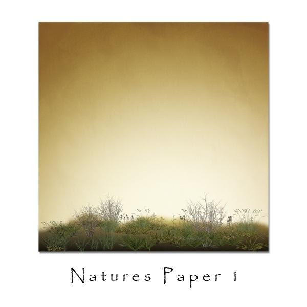 jsch_natpap1_folder