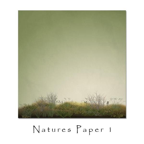 jsch_natpap2_folder