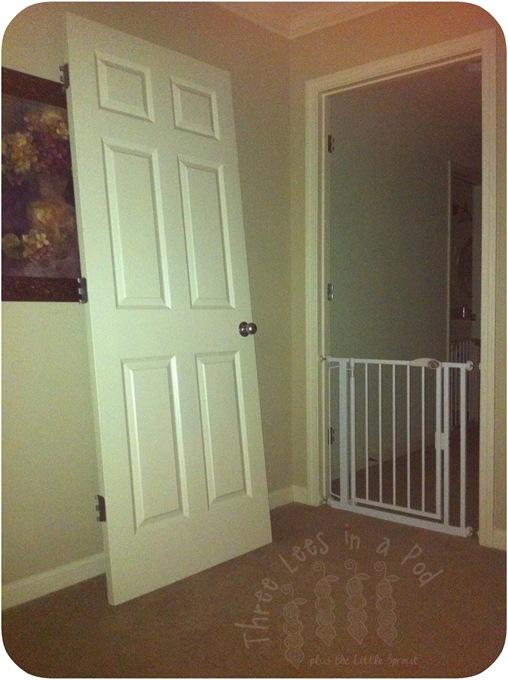 Door 04-18-11 W