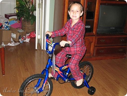 Christmas 2006 208-042