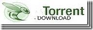 TORRENT[3][3]