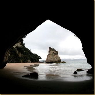View from Cathedral Cove Archway - Coromandel Peninsula square crop
