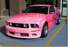 PRTTY PINK MUSTANG