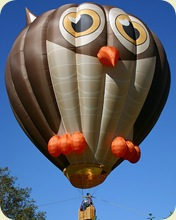 hot_air_balloon_25sfw