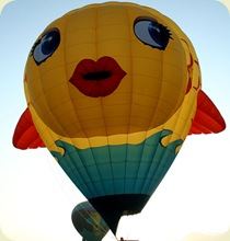hot_air_balloon_26sfw