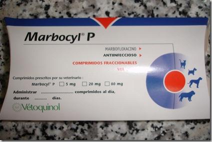 pastillitas