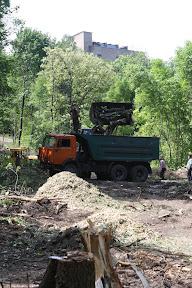 (с) Главное: Вывоз распиленных деревьев