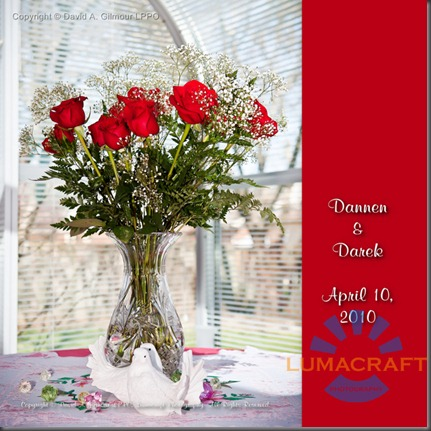 Dannen & Darek's Bridal Album