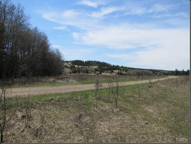 Spring Trip 2010 1404