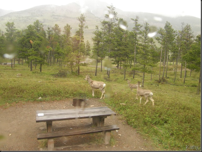 Spring Trip 2010 1877