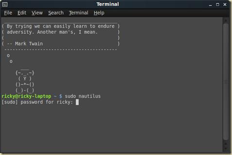 Screenshot-Terminal