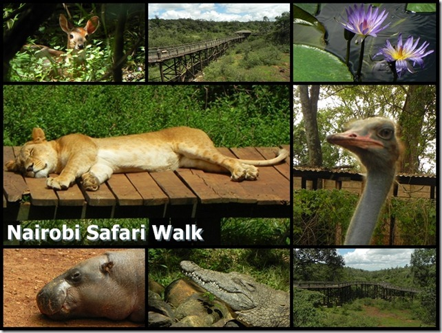 Nairobi_Safari_Walk_2
