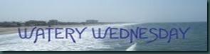 WateryWed2c