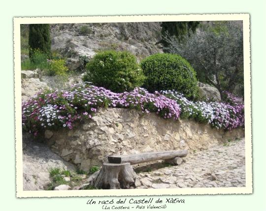 Racó primaveral al Castell de Xàtiva