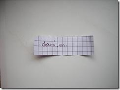 DSCN6831