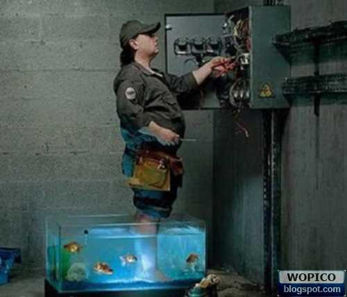Brave Electrician