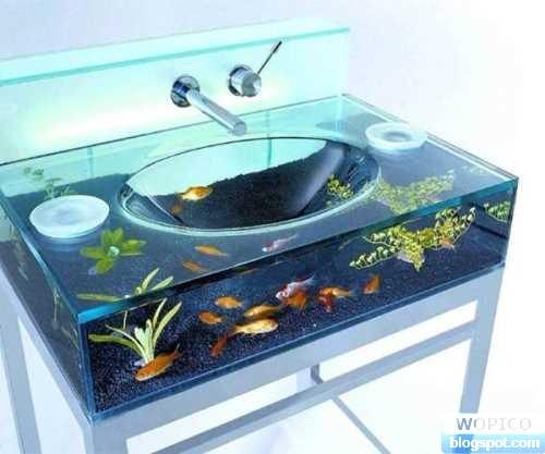 Unique Aquarium Sink