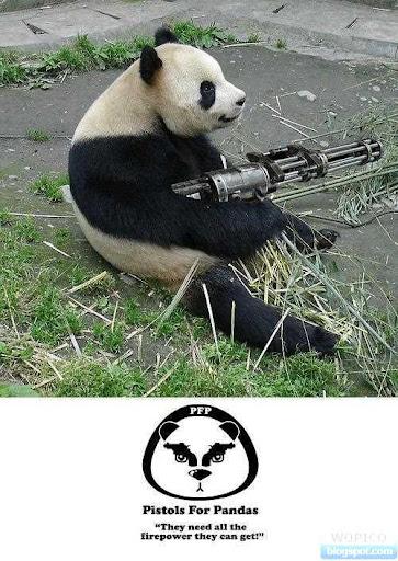 Pistol For Panda