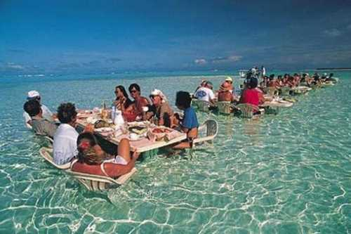 Sea Lunch