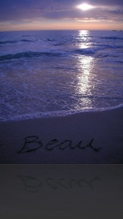 Beau2