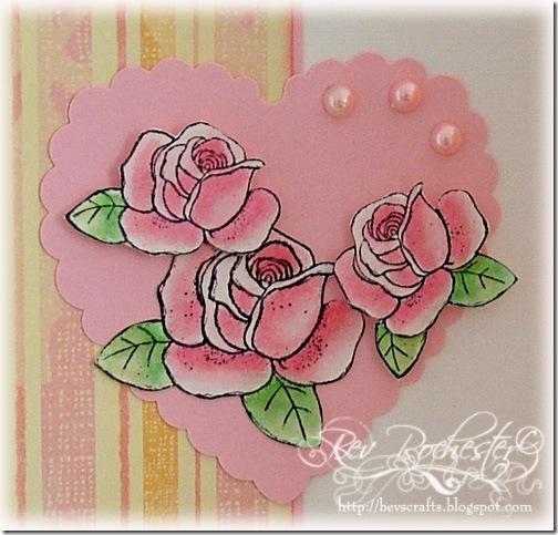 magnolia-challenge-1-c