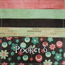 pocket 6