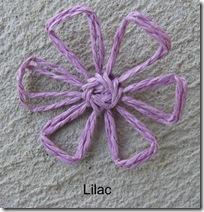 lilacdaisy