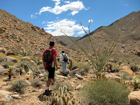 Carrizo Gorge - Anza Borrego Desert