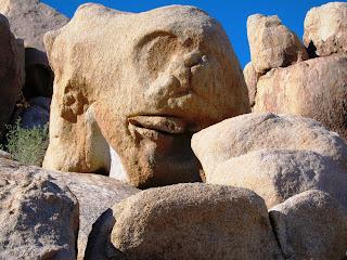 ALien Rock face near Piedras Grandes - Anza Borrego