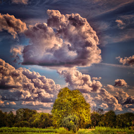 Agosto street by Luigi Esposito - Landscapes Prairies, Meadows & Fields ( clouds, sky, street, summer )