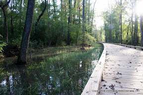 The Low Lying Greenway in Forsyth will be prone to flooding even in light rain