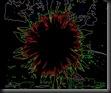 sunflower (8) Neon Edges