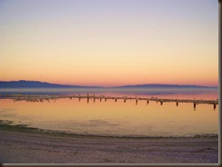 pastel sea (4)