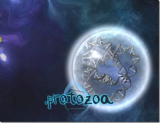 protozoa 2008-11-23 23-28-04-73