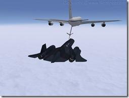 Blackbird-aar_1