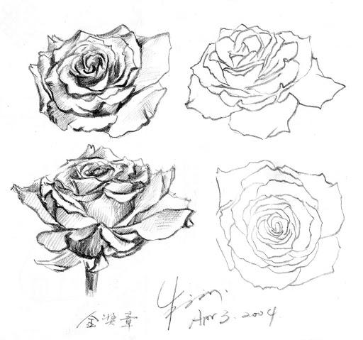 http://lh5.ggpht.com/_7d201KVzyRw/R0jKBiAGfvI/AAAAAAAAECI/flmQUdOvP-4/Roses.jpg