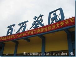 Sunflower Garden (95)